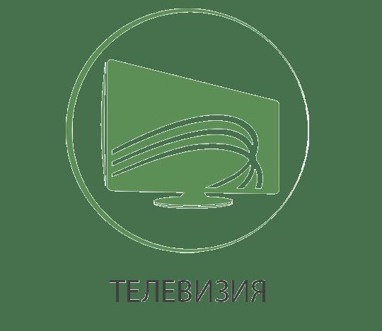 Цифрова и аналогова телевизия